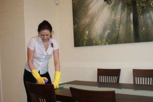 st albans regular cleaning